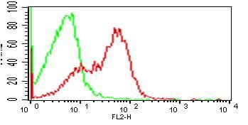 Monoclonal Antibody to hCD33 (Clone: wm53)