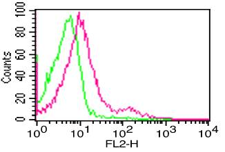 Monoclonal Antibody to hCD16 (Clone: CB16)