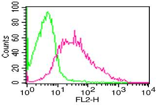 Monoclonal Antibody to Human CD38 (Clone: FS02)