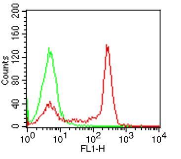 Monoclonal Antibody to Human CD4 (Clone: OKT4)