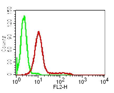 Monoclonal Antibody to IL-36R (Clone: ABM4B73)