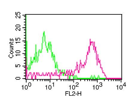 Monoclonal Antibody to CD48 (Clone:ABM4h95)