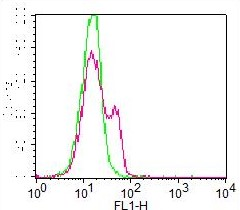 Monoclonal Antibody to MBD1 (Clone: ABM15H2) FITC Conjugated