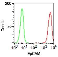 Monoclonal Antibody to EpCAM (Clone: VU-1D9)