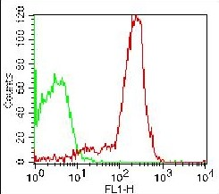 Monoclonal antibody to CD44 (Clone: 156-3C11 ) FITC Conjugated