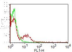 Monoclonal Antibody to CD31 (ABM3E63) FITC Conjugated