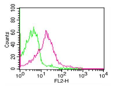 Monoclonal Antibody to Human PD-L1 (Clone: ABM4E54)