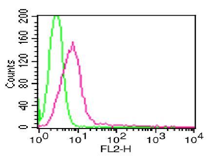 Monoclonal antibody to EpCAM (Clone: ABM4D85 )