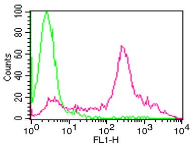 Monoclonal antibody to Human PD-L1 FITC conjugated (Clone: ABM5F25)