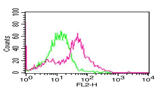 NALE™ Monoclonal antibody to hPD-L1 (Clone: ABM5F25) (No Azide Low Endotoxin)