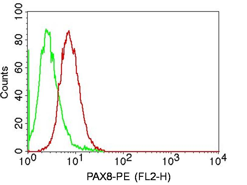 Monoclonal Antibody to PAX8 (Clone:ABM5F33 )