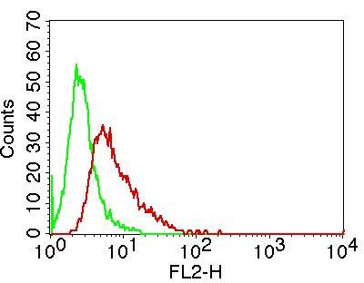 Monoclonal antibody to MSi-2  (Clone: ABM5A48 )