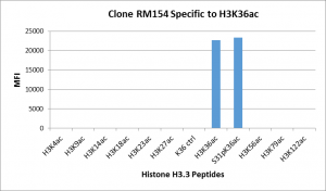 Recombinant Rabbit Monoclonal Antibody  to Acetylated Histone H3 Lysine 36 (K36ac) (Clone: RM154)(Discontinued)