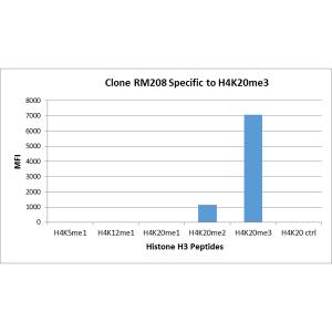 Recombinant Rabbit Monoclonal Antibody  to Monomethylated Histone H4 Lysine 20 (Clone: RM208)(Discontinued)