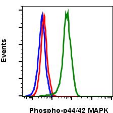 Phospho-p44/42 MAPK (Erk1/2) (Thr202/Tyr204) (Clone: A11) rabbit mAb