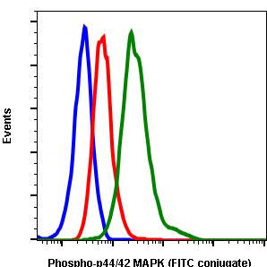 Phospho-p44/42 MAPK (Erk1/2) (Thr202/Tyr204) (Clone: A11) rabbit mAb FITC conjugate