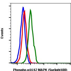 Phospho-p44/42 MAPK (Erk1/2) (Thr202/Tyr204) (Clone: A11) rabbit mAb SureLight 488 conjugate