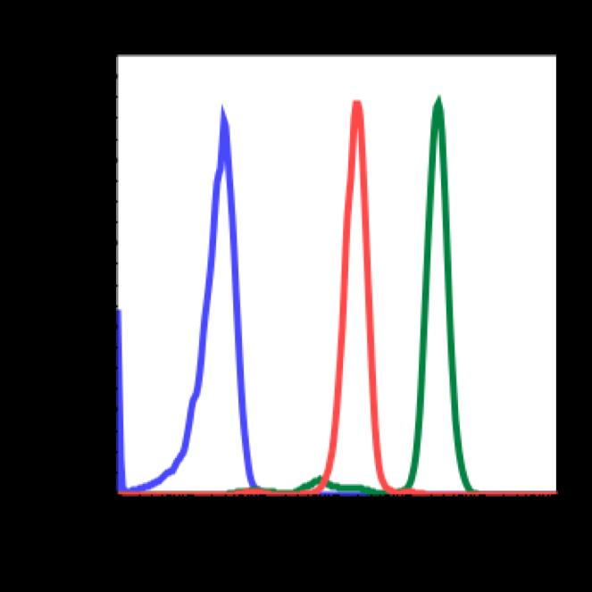 Phospho-Akt1 (Ser473) (Clone: C7) rabbit mAb