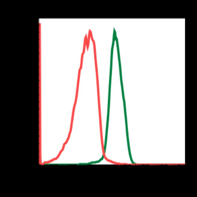 Phospho-Akt1 (Ser473) (Clone: C7) rabbit mAb FITC conjugate