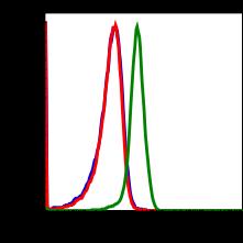 Phospho-Stat6 (Tyr641) (Clone: G12) rabbit mAb FITC conjugate