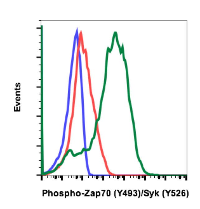 Phospho-Zap70 (Tyr493)/Syk (Tyr526) (Clone: H11) rabbit mAb