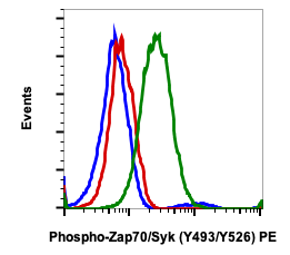 Phospho-Zap70 (Tyr493)/Syk (Tyr526) (Clone: H11) rabbit mAb PE conjugate