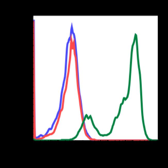 Phospho-PLCg2 (Tyr759) (Clone: G3) rabbit mAb