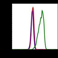 Phospho-Btk (Tyr223) (Clone: B4) rabbit mAb FITC conjugate