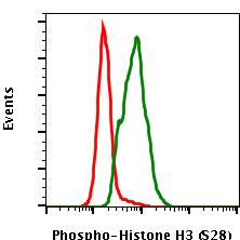 Phospho-Histone H3 (Ser28) (Clone: D6) rabbit mAb PE conjugate