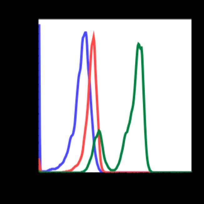 Phospho-PI3 Kinase p85 (Tyr458)/p55 (Tyr199) (Clone: 1A11) rabbit mAb