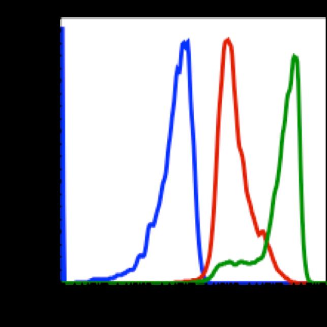 Phospho-Zap70 (Tyr319)/Syk (Tyr352) (Clone: A3) rabbit mAb