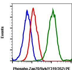 Phospho-Zap70 (Tyr319)/Syk (Tyr352) (Clone: A3) rabbit mAb PE conjugate