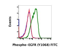 Phospho-EGFR (Tyr1068) (Clone: E5) rabbit mAb FITC conjugate