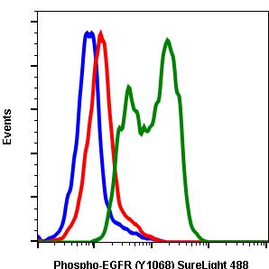 Phospho-EGFR (Tyr1068) (Clone: E5) rabbit mAb SureLight488 conjugate