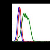Phospho-Shp2 (Tyr580) (Clone: 4A2) rabbit mAb