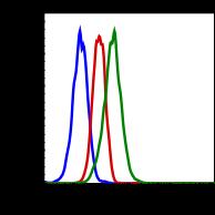 Phospho-Shp2 (Tyr580) (Clone: 4A2) rabbit mAb PE conjugate
