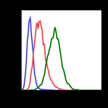 Phospho-NDRG1 (Thr346) (Clone: F5) rabbit mAb