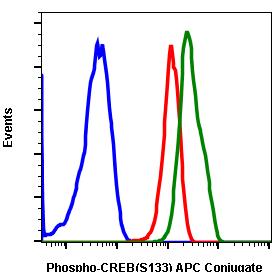 Phospho-CREB (Ser133) (Clone: 4D11) rabbit mAb APC conjugate