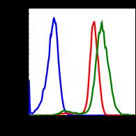 Phospho-MSK1 (Thr581) (Clone: A5) rabbit mAb