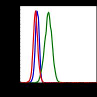 Phospho-PLCg1 (Tyr783) (Clone: C4) rabbit mAb PE conjugate