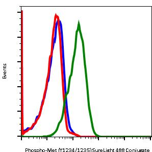 Phospho-MET(Tyr1234/Tyr1235) (Clone: 6F11) rabbit mAb SureLight488 conjugate