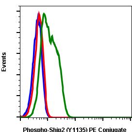 Phospho-Ship2 (Tyr1135) (Clone: 1D2) rabbit mAb PE conjugate