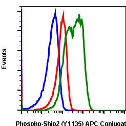 Phospho-Ship2 (Tyr1135) (Clone: 1D2) rabbit mAb APC conjugate