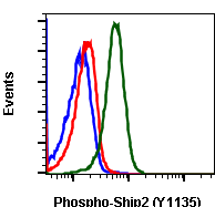 Phospho-Ship2 (Tyr1135) (Clone: 1D2) rabbit mAb SureLight488 conjugate