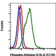 Phospho-Histone H2A.X (Ser139) (Clone: 1E4) rabbit mAb