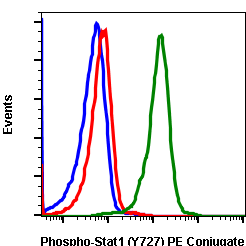 Phospho-Stat1 (Ser727) (Clone: C6) rabbit mAb PE conjugate