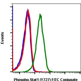 Phospho-Stat1 (Ser727) (Clone: C6) rabbit mAb FITC conjugate
