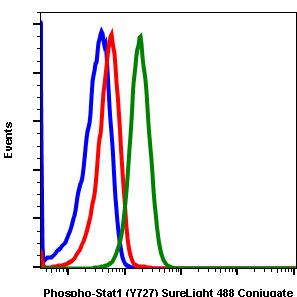 Phospho-Stat1 (Ser727) (Clone: C6) rabbit mAb SureLight488 conjugate
