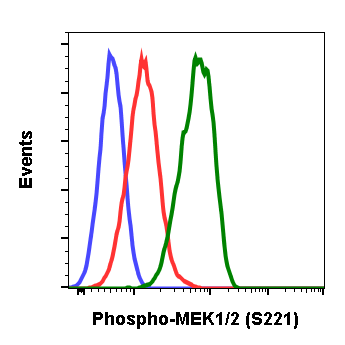 Phospho-MEK1/2 (Ser221) (Clone: D3) rabbit mAb