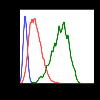 Phospho-PDK1 (Ser241) (Clone: F7) rabbit mAb